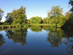 Brough Park lake view Photo