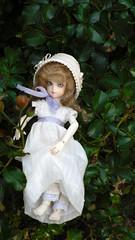 Rose Hips For Tea? #2 (Mandasmac) Tags: peach bjd rosehips regency elly dollmore banji elfelly spampy
