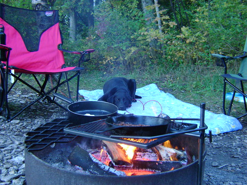 Bailey Keeps Watch Over the Fire