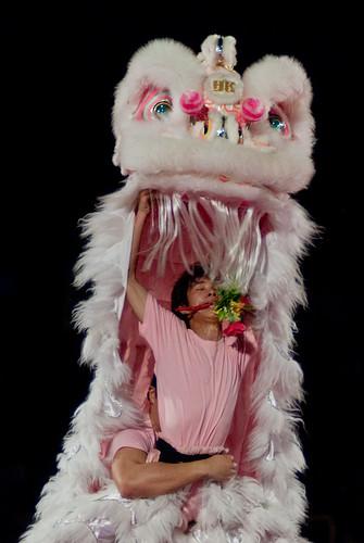 2010戲獅甲 香港代表隊