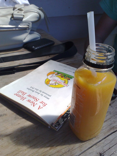 another Little Golden Book & OJ