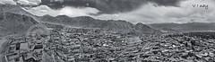City of Leh - Monotone (Vinay Venugopal) Tags: panorama canon stitch pano leh 9images cityofleh vnay lehcity vinayv