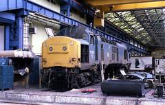 37253 [37699] Crewe Works 28.7.85 (Paul Bettany) Tags: crewe railways britishrail englishelectric brel class37 37699 creweworks 37253