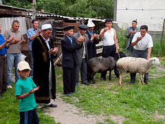 Prayer on funeral commemoration (Evgeni Zotov) Tags: boy people man animal kid asia village child sheep muslim islam prayer religion pray funeral slaughter priest kyrgyz tradition kyrgyzstan mullah commemoration kirghizistan kirgistan commemorate kirgizia mulah kirgizistan aksuu kirgizi kirgisistan  kirguistan kirghizia krgzistan quirguisto  moldo         moollah