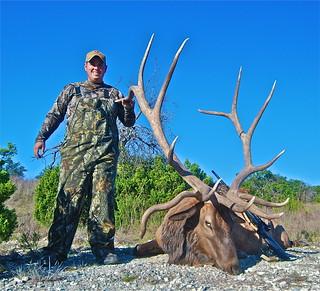 Elk 424
