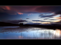 Lochan Sunset (angus clyne) Tags: blue sunset summer cloud dog mountain cold home night canon reeds lens scotland moving pond weeds long exposure angle ben angus dusk hill wide perthshire deep tay lilly hour late loch finn setting kenmore scotish gloaming lawers clyne lochan colorphotoaward 5dmarkii