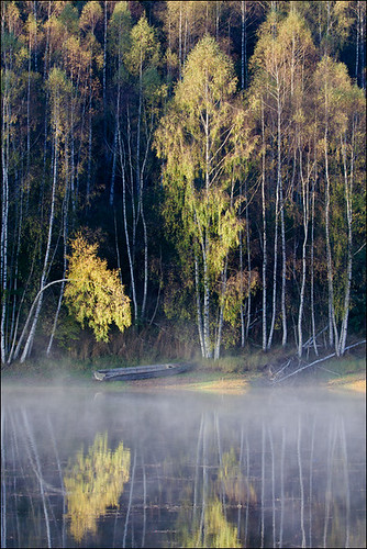 IMAGE: http://farm5.static.flickr.com/4090/5070609997_5a37aa863a.jpg