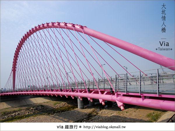 【大坑情人橋】新的台中約會景點~浪漫粉紅色情人橋2