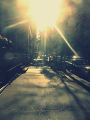 basking in it as I walk down this block. (Manhattan Girl) Tags: