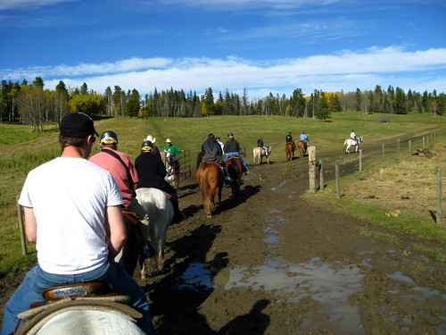 Horseback riding in Calgary by Mike Souza, on Flickr