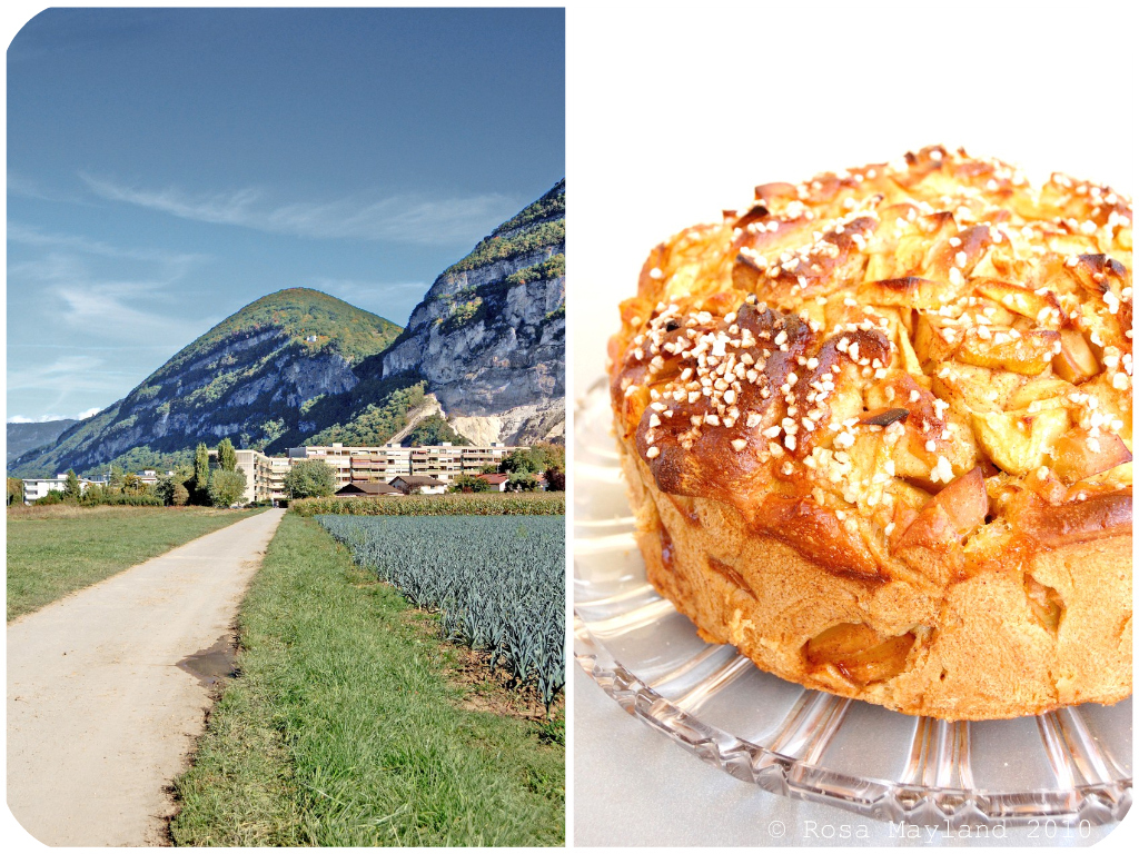 Apple Challah Picnik-Collage 2 bis