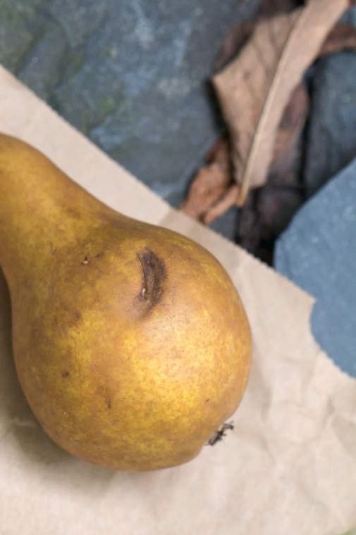 final bruised pear