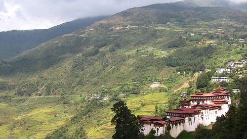dzong and rice terraces