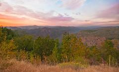 Stanislaus National Forest Vista