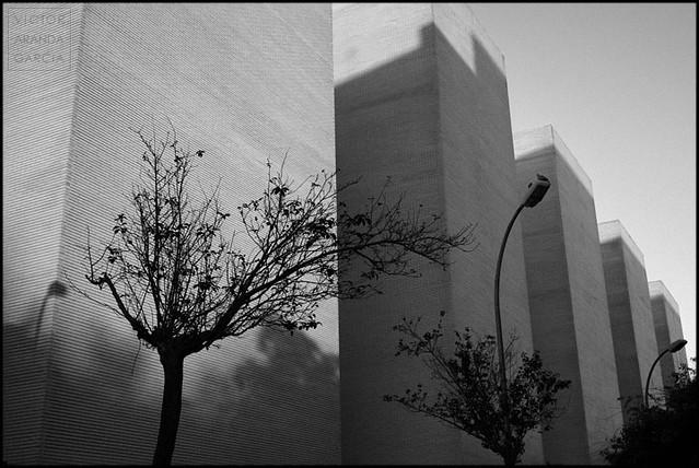 Sin título (Valencia 2010)