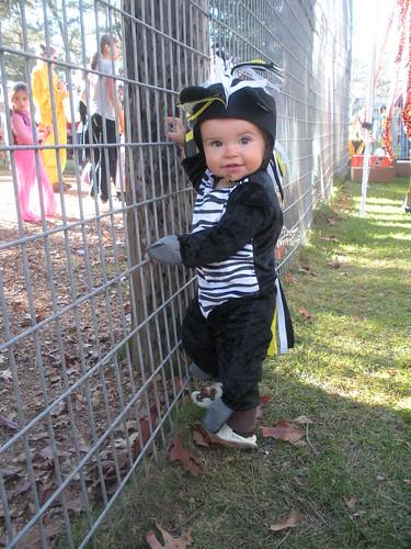 Zoo Boo 2010