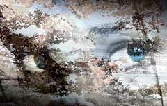 Porque has sido quien imparta justicia a mis das... (conejo721*) Tags: argentina amor paisaje texturas esperanza palabras mardelplata sentimiento poesa poema ojosdemujer conejo721
