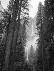 Yosmeite Falls (B&W)