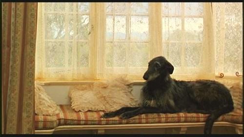 """спальня - интерьер дома из фильма """"Из Африки"""""""