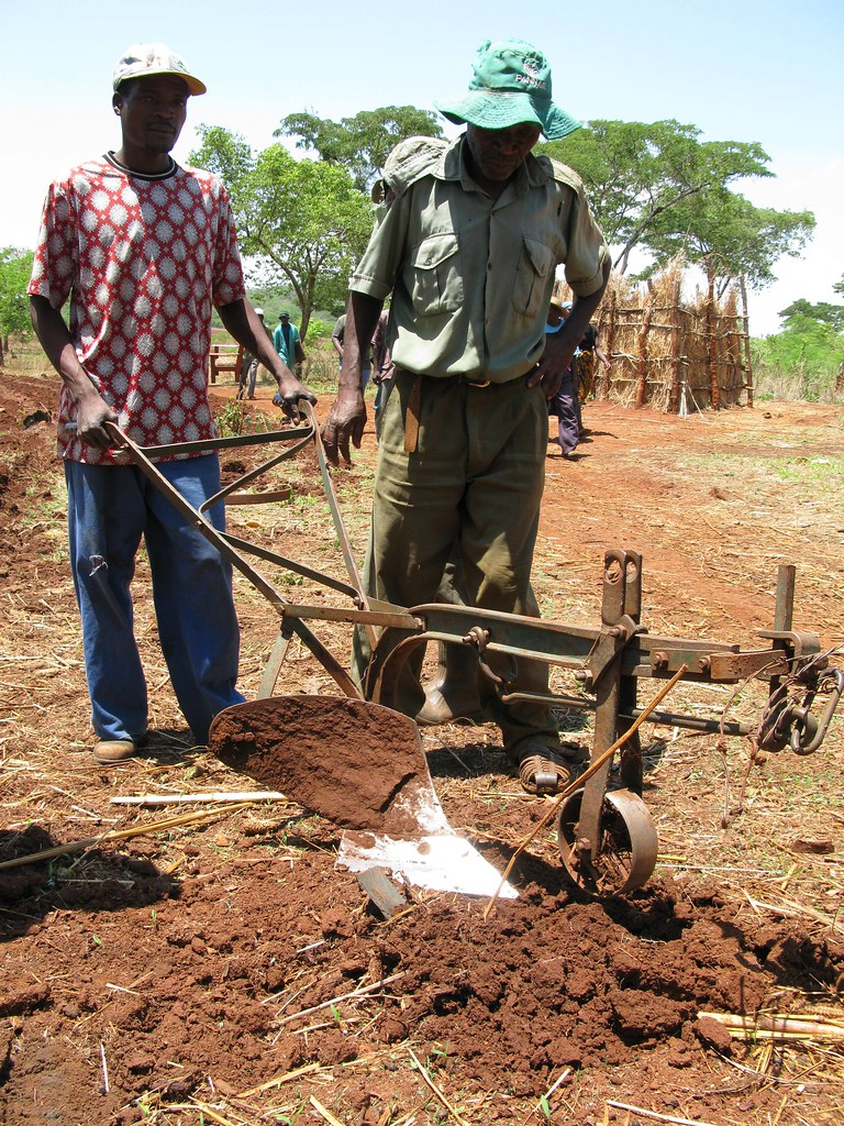 Farmer with equipment at conservation agriculture demonstration plot, Zimbabwe
