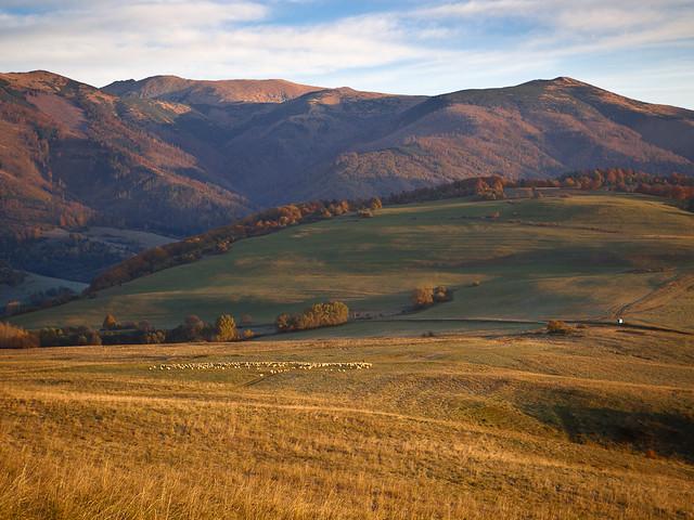 Idyllic Morning ~ Horehronie, Slovakia