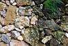 Green Rock? (mynameisharsha) Tags: india green texture wet rock stone moss nikon sandstone bangalore granite algae karnataka mysore d60 maddur chitravana 1855mmf3556gvr mynameisharsha