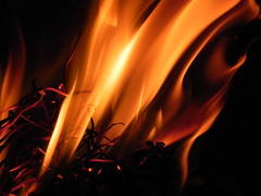 Playing with fire.../ Brincando com o fogo... (Maria-Flor) Tags: wood hot closeup fire fireplace warm pines 1001nights fogo cosy quente calor lareira pinhas lume tria nikonp100