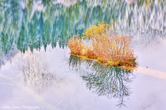 *Reflection   (Pic_Joy) Tags: china winter reflection asia unescoworldheritagesite  sichuan  jiuzhaigou      gic092012
