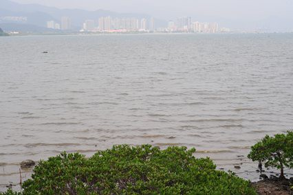 沙頭角海(Sha Tau Kok Hoi)の向こうに沙頭角(Sha Tau Kok)の街並み