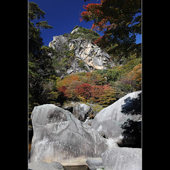 Rock and trees (Laurent T (aka thery_lg)) Tags: blue autumn red tree green japan river landscape foliage momiji gorge kofu chubu shosenkyo