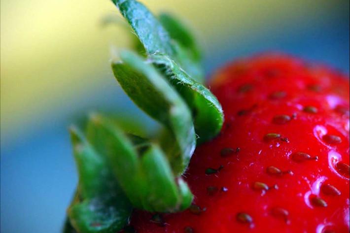 102110_strawberry