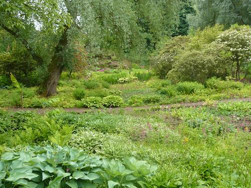 Harewood Himalayan Garden