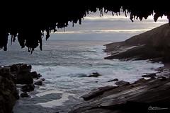 2003 Australia Flinders Chase Kangaroo Island   51 mm 0069 (Loïc Lagarde) Tags: 2003 landscape island ile australia sa paysage kangarooisland australie flinderschase