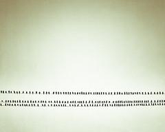 Birds of a Feather. (CarolynsHope) Tags: green bird birds wire community many meeting social minimal negativespace together simplicity gathering socializing minimalism simple meet communities fellowship gettogether hangout alot gather socialize birdonawire simplistic birdonwire birdsonwires carolynshope