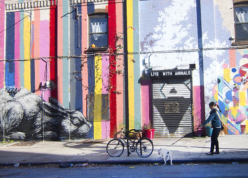 Walking a BARC pitbull in Williamsburg, Metropolitan Ave. near Kent Ave. Kayrock Screen Printing mural.