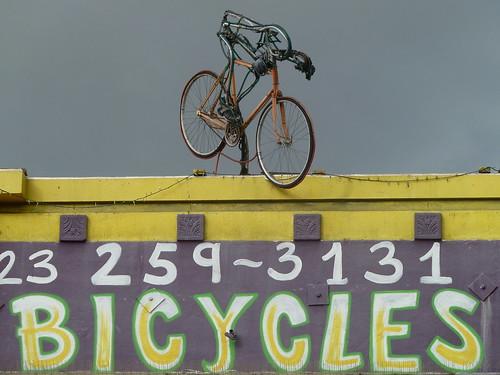 Neon Cyclist
