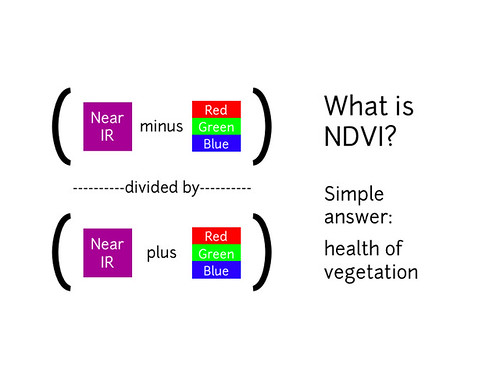 What is an NDVI image?