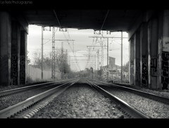 VF (Le***Refs *PHOTOGRAPHIE*) Tags: bridge bw white black art train graffiti vanishingpoint nikon tag perspective rail railway nb pont hdr sncf d90 pylones lerefs voieferrer