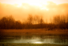 Boring but peaceful (Mizrak) Tags: light orange mist lake colour reflection tree nature water beautiful forest landscape pond haze woods scenery warm peace peaceful tranquility location boring tone 35mm18 thebestofday gnneniyisi nikond3000 mostbeautifulpictures dwcfflandscape