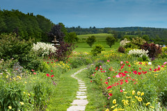 Pastoral (Gene Mordaunt) Tags: steannesspa grafton ontario flowers pathway fields poppies pastoral red yellow gardens fountain
