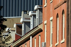 Philadelphia arches (moocatmoocat) Tags: windows philadelphia architechture bricks arches roofs tiles