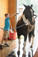 Washing Baba (Montgomery Area Nontraditional Equestrians (MANE)) Tags: al mane pikeroad
