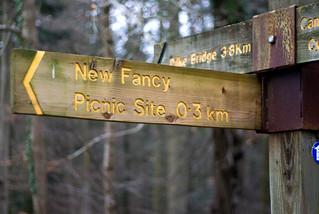 New Fancy Picnic Site