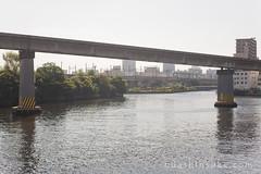 100728_019__MG_0587 (oda.shinsuke) Tags: geotagged railway monorail tokyomonorail geo:lat=35635447519058644 geo:lon=1397512274980545