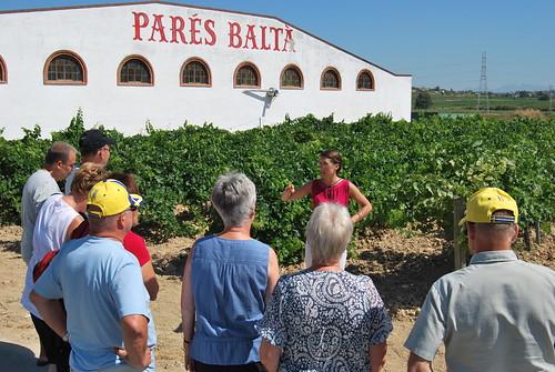 Anna berättar om vinodling vid Parés Baltà