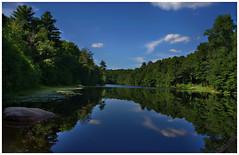 timberland preserve