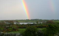 My Room with a view - Two Rainbows (Ken Meegan) Tags: trees ireland tree rainbow doublerainbow cowexford saltmills myroomwithaview 252010 myroomwithaviewtworainbows