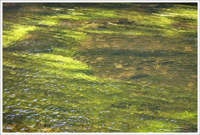 River Cong