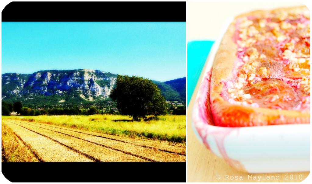 Prune Focaccia Picnik collage 3 bis