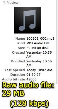 29 MB at 128 kbps